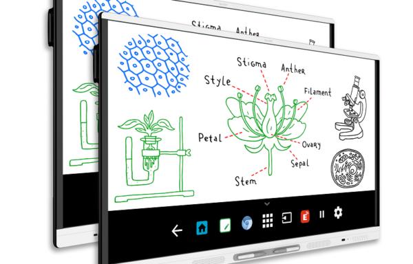 2 x monitor interaktywny SMART Board MX165 (SBID-MX165) [DOSTĘPNY OD CZERWCA 2018 R.]