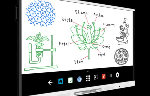 Monitor interaktywny SMART Board MX175 (SBID-MX175) [DOSTĘPNY OD CZERWCA 2018 R.]